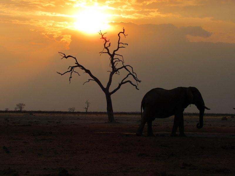 Overland 4x4 tour of Botswana