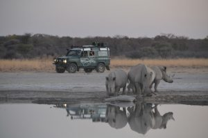 14 day tour of Botswana