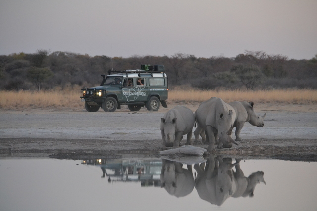 best overland 4x4 adventure Southern African wildlife