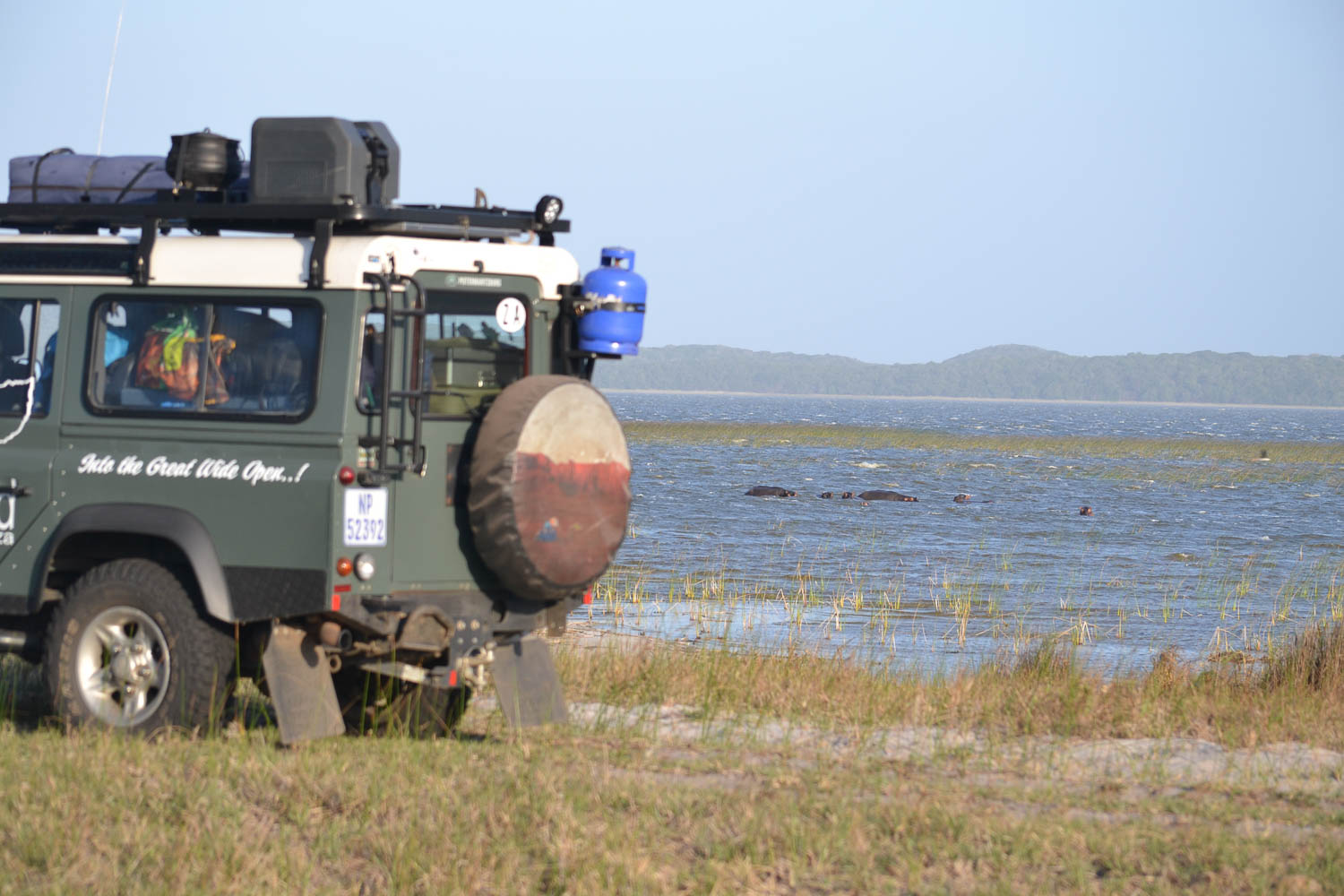 Hippos in Botswana with South Africa Overland 4x4 Tours