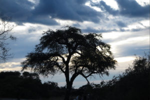 Majestic African skies with South Africa Overland 4x4 Tours